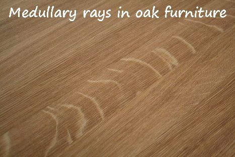 medullary rays shown on an oak table supplied by www.oakdiningsets.co.uk